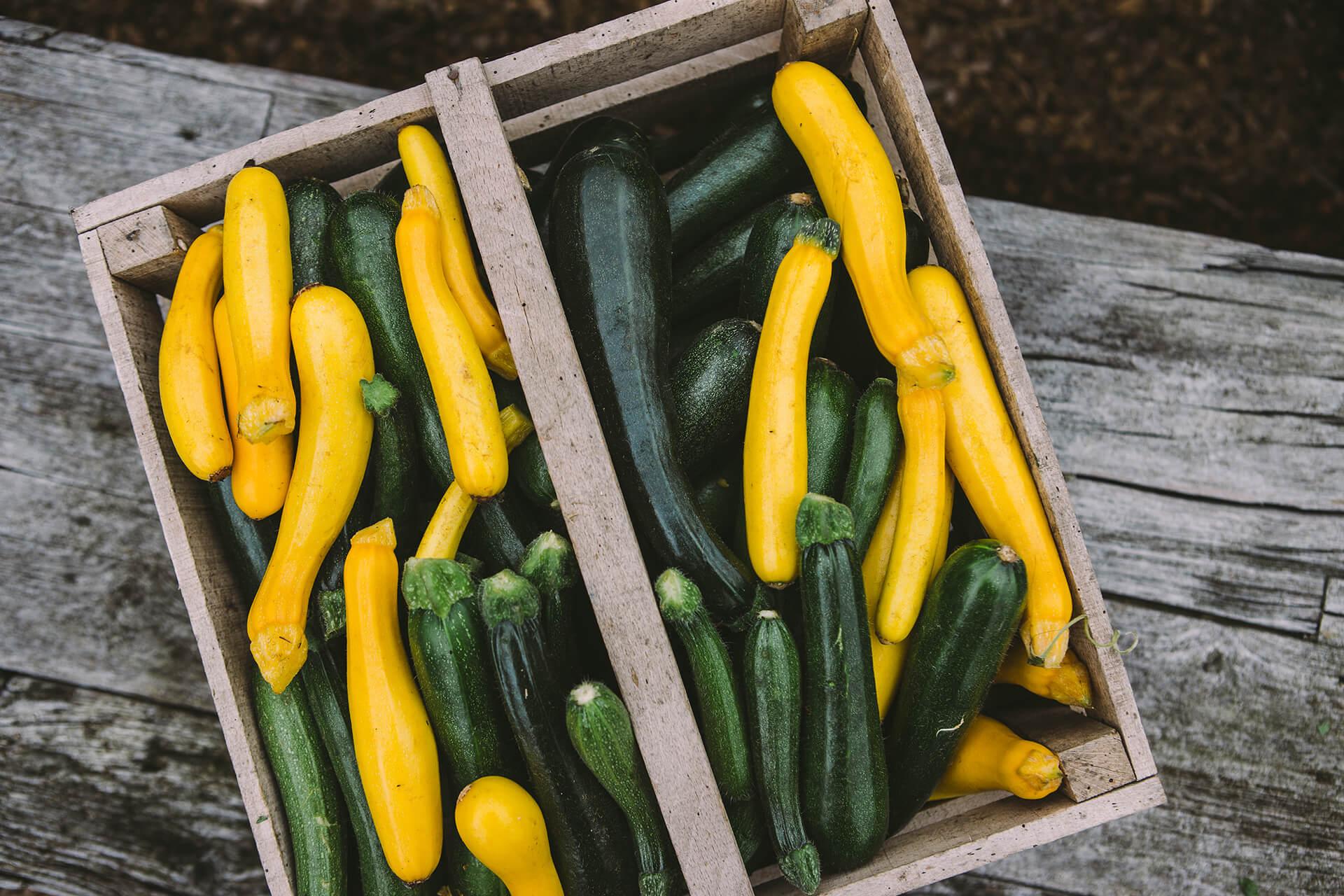 Daylesford, Daylesford Organic, Organic, Farm, Field, Green, Grass, Landscape, Vegetables, Summer, Photography, Agency, Marketing, Gloucestershire, WeAreShuffle