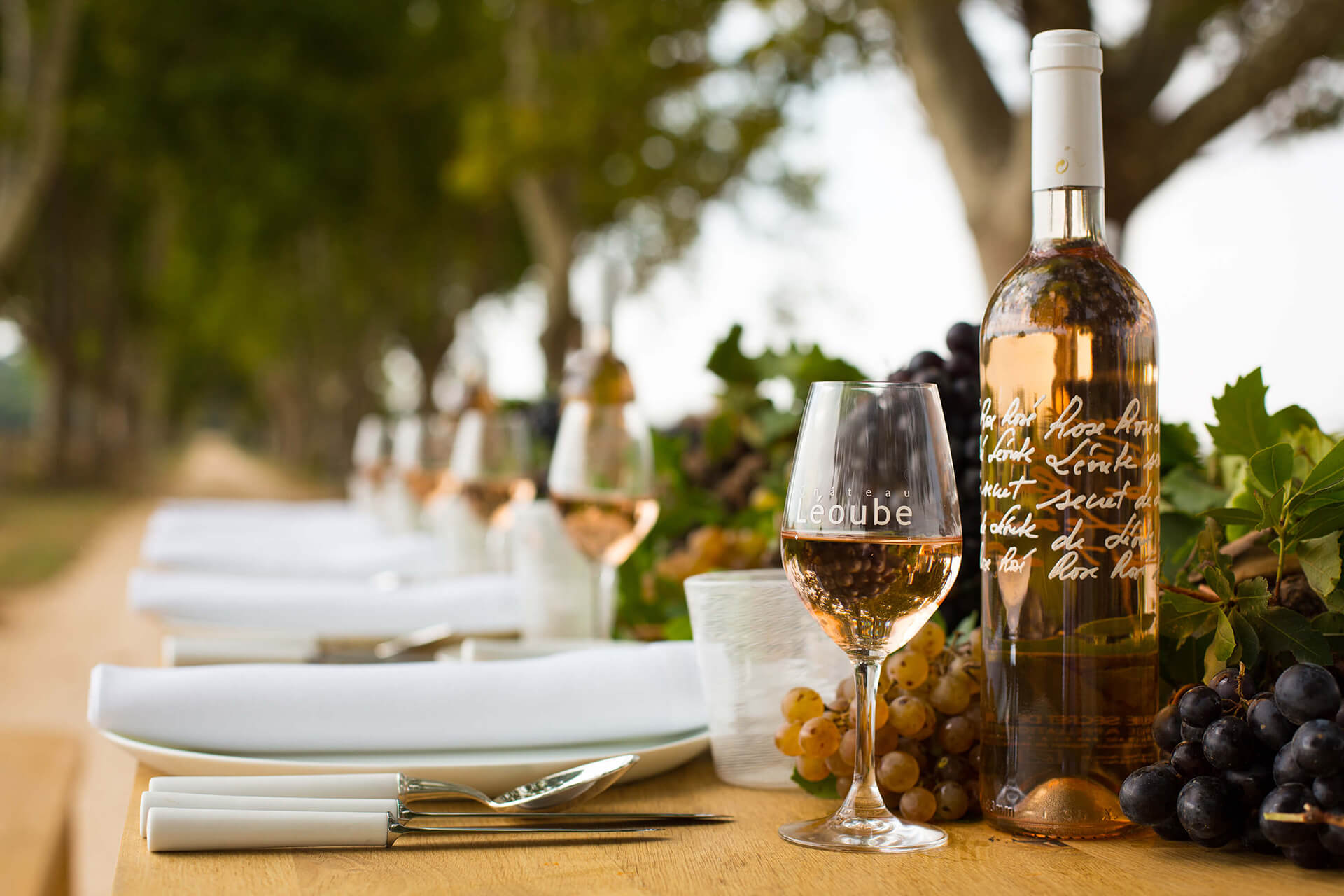 Chateau Leoube, Rose, Wine, South of France, Organic, Depth of Field