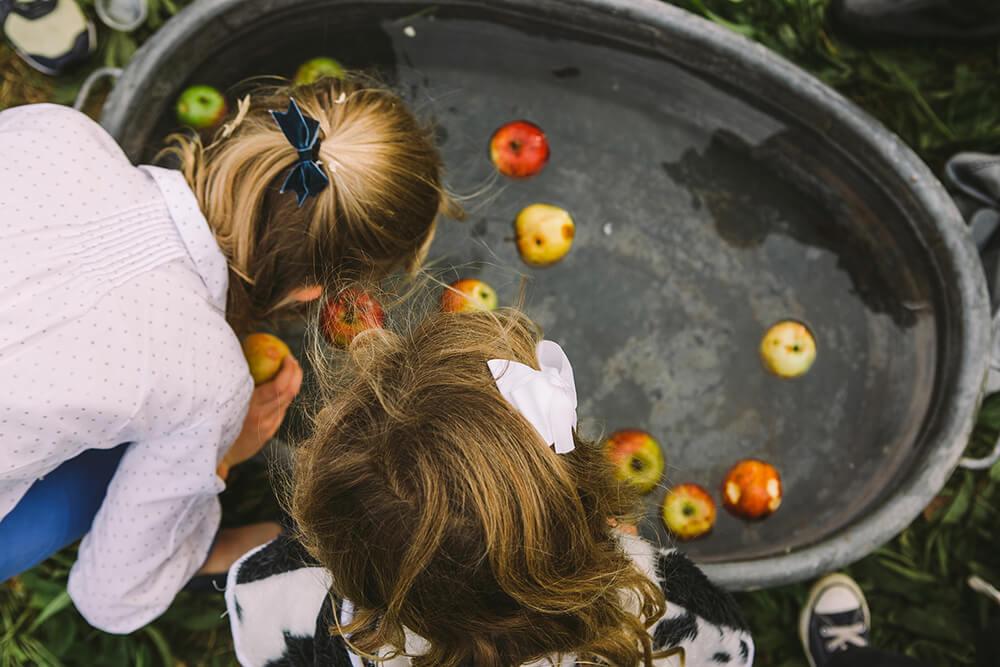 Daylesford, Daylesford Organic, Organic, Farm, Field, Green, Grass, Landscape, Aples, Water, Family, Summer, Photography, Agency, Marketing, Gloucestershire, WeAreShuffle, Autumn